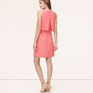 NEW with Tags Pink Scalloped LOFT Openback Dress